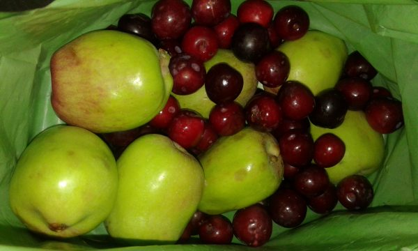 fruits malgaches